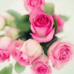 Kytice a kvety